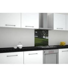 Стъклен гръб за кухня с принт